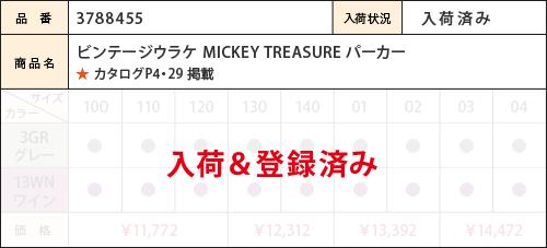 mic_18aw_m455